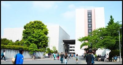 白藤ひかり、駒沢大学
